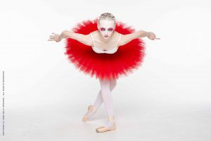 Red Swan Ballet